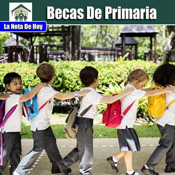 Beca de Primaria Requisitos.